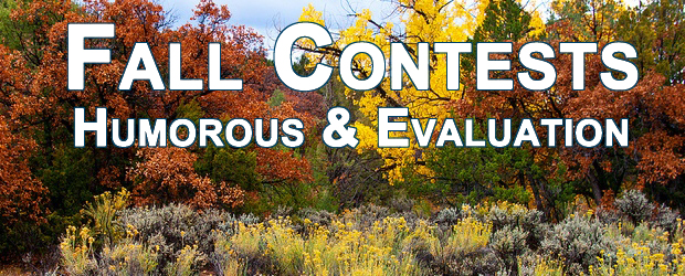 Fall 2015 Contests – Humorous & Evaluation